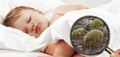 S preprostimi koraki do boljšega spanca. Vir: http://www.fhshh.com/health-children-at-risk-allergy-dust-mites-are-the-number-one-enemy.html