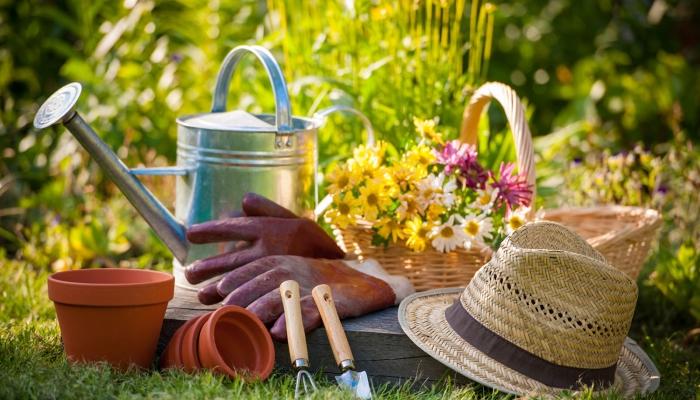 Domač kompost je eko in brezplačen! Vir: myhealthylivingcoach.com